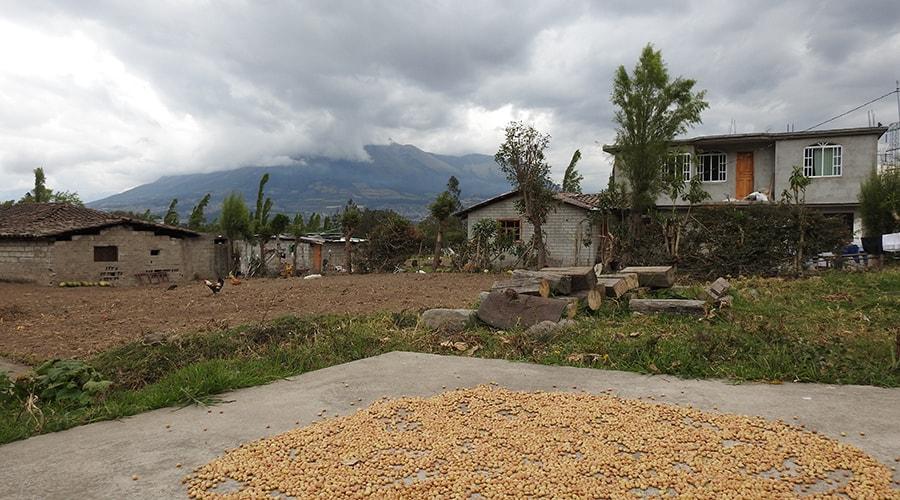 Otavalo Indigenous Community